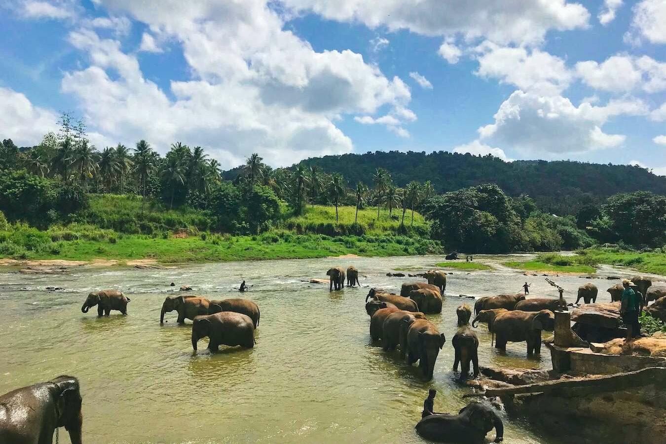 Groepsreis Sri Lanka | Esperanto Travel - Reisbureau Nieuwpoort