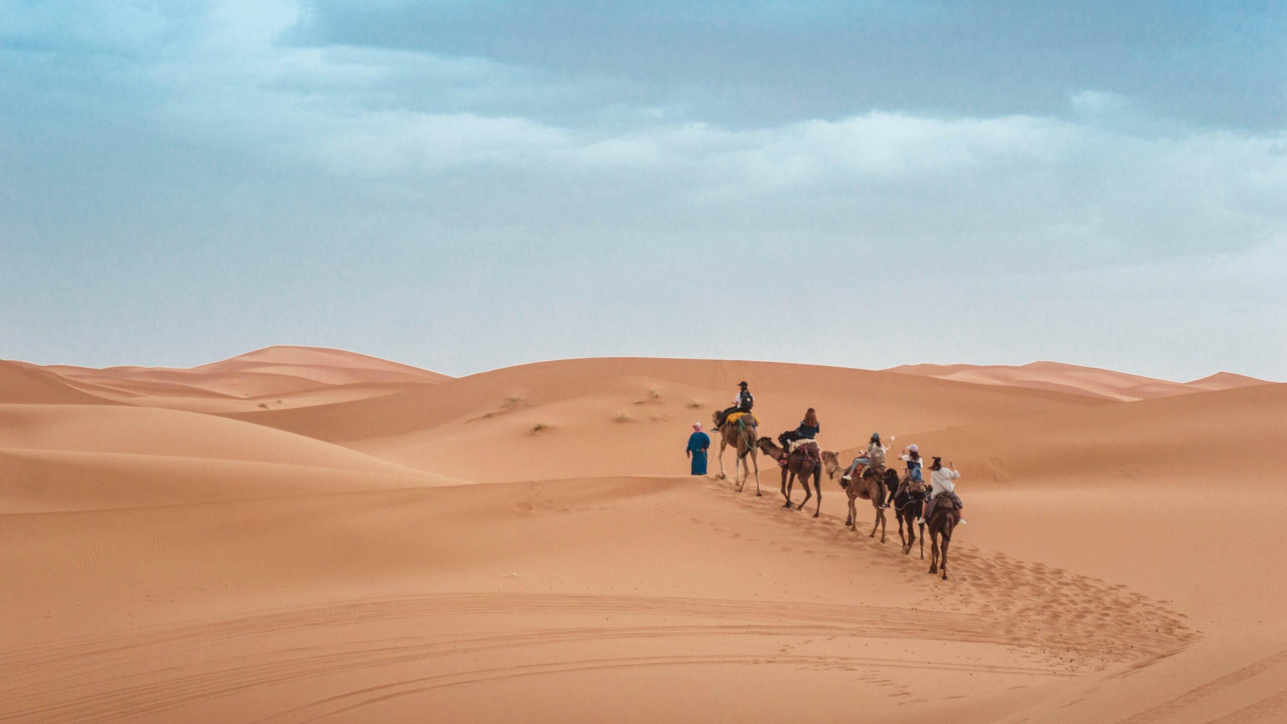 Groepsreis Rondreis Marokko 2021 | Esperanto Travel - Reisbureau Nieuwpoort